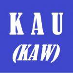 what does kau mean - indonesian pronoun 01